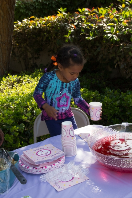 jayla birthday party2